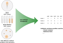 Antibiotic resistance profiling