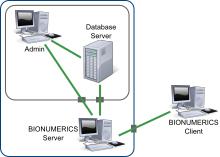 BIONUMERICS Server scheme